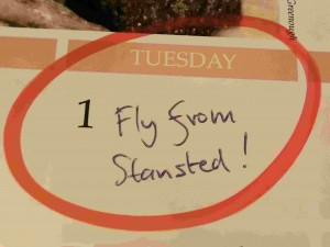 Fly Tuesday