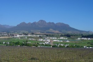 View from Protea Stellenbosch