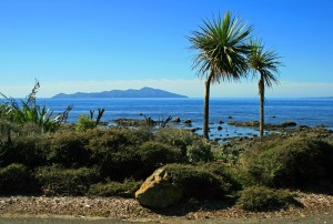 Kapiti Island from the main coast road