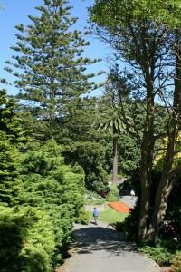 Pathways wind down the hillside