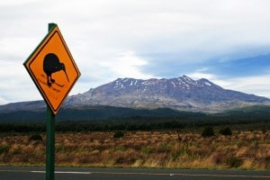 Skiwi sign on the road to Mt Ruapehu