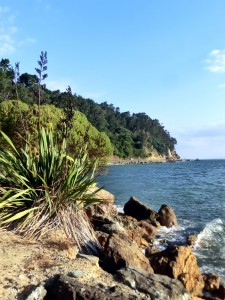 Auckland - Coromandel West Coast