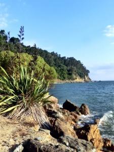 Auckland - Coromandel West Coast