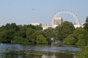 London Eye from Hyde Park
