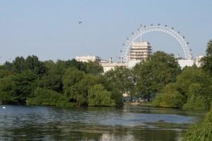 London Eye from Hyde Park