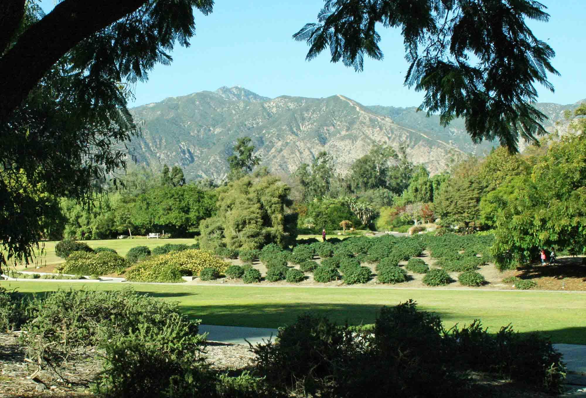 Botanical Gardens Los Angeles Los Angeles Arboretum