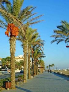 Quiet Costa Promenade in Autumn
