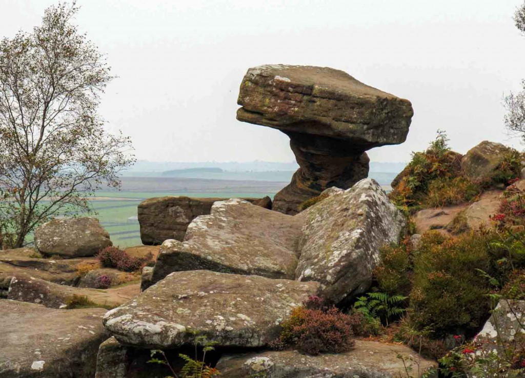 ET Gone Home to Brimham Rocks