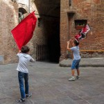 6. Flag waving