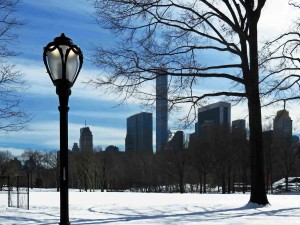 Central Park Looking Towards Midtown