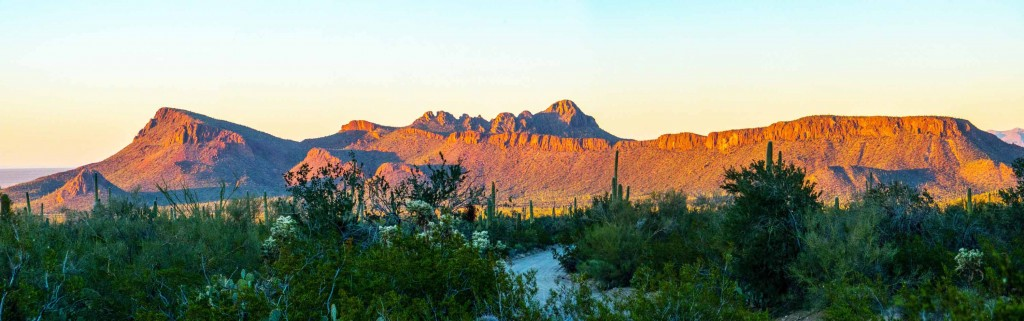 Panoramic: Picture Rocks glowing in the early evening light. Saguaro National Park (West).