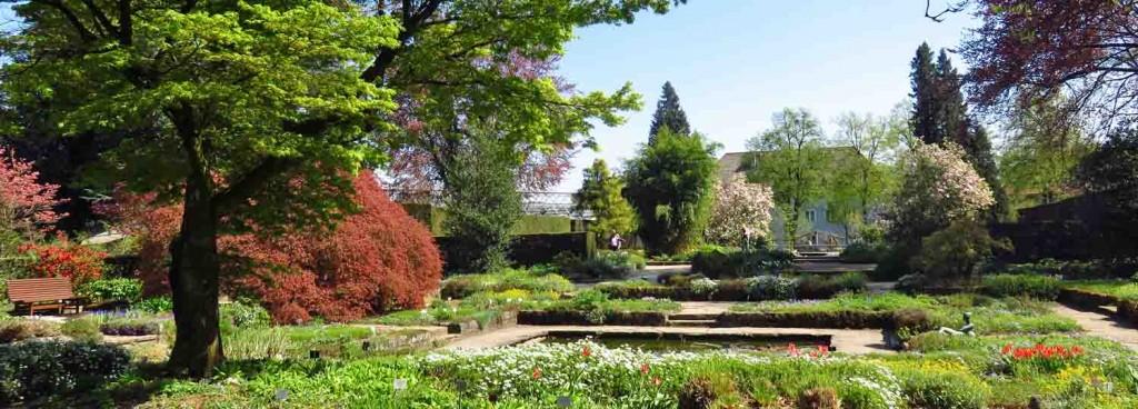 Botanical Garden Linz