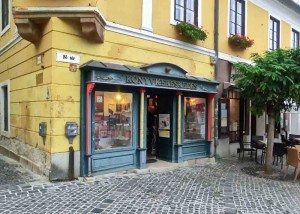 Old Book Shop in Central Szentendre