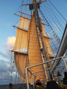 Sea: Lord Nelson in full sail