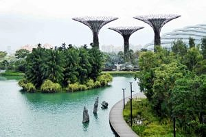 Skytrees in the Garden by the Bay