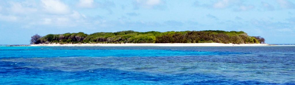 Lady Musgrave Island on the Great Barrier Reef