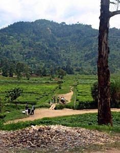 Rwanda: Sightseeing