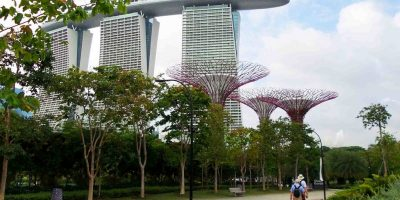 Supertrees and the Marina Sands Hotel