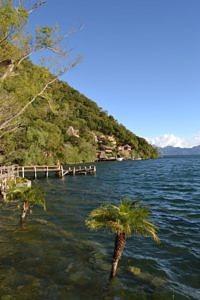Sub-tropical rainforest
