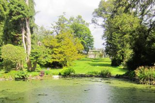 Wicklow: Kilmacurragh Gardens