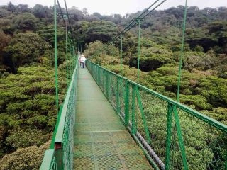 Costa Rica: Hanging Bridge