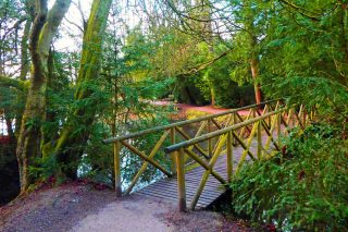 Baddesley Clinton poolside walk