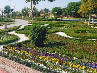 Gardens in Kokand