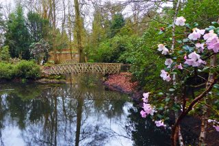 Hare Hill Gardens