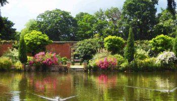 Elsham Hall Gardens - Lakeside Walk