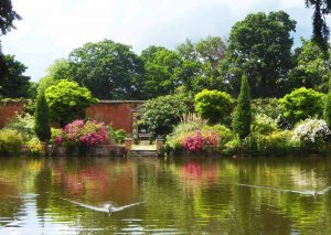 Elsham Hall Gardens - Lakeside Walk