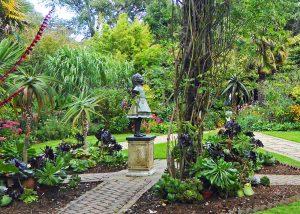Winter: Abbotsbury Subtropical Garden
